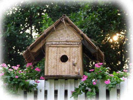 bird_house_web